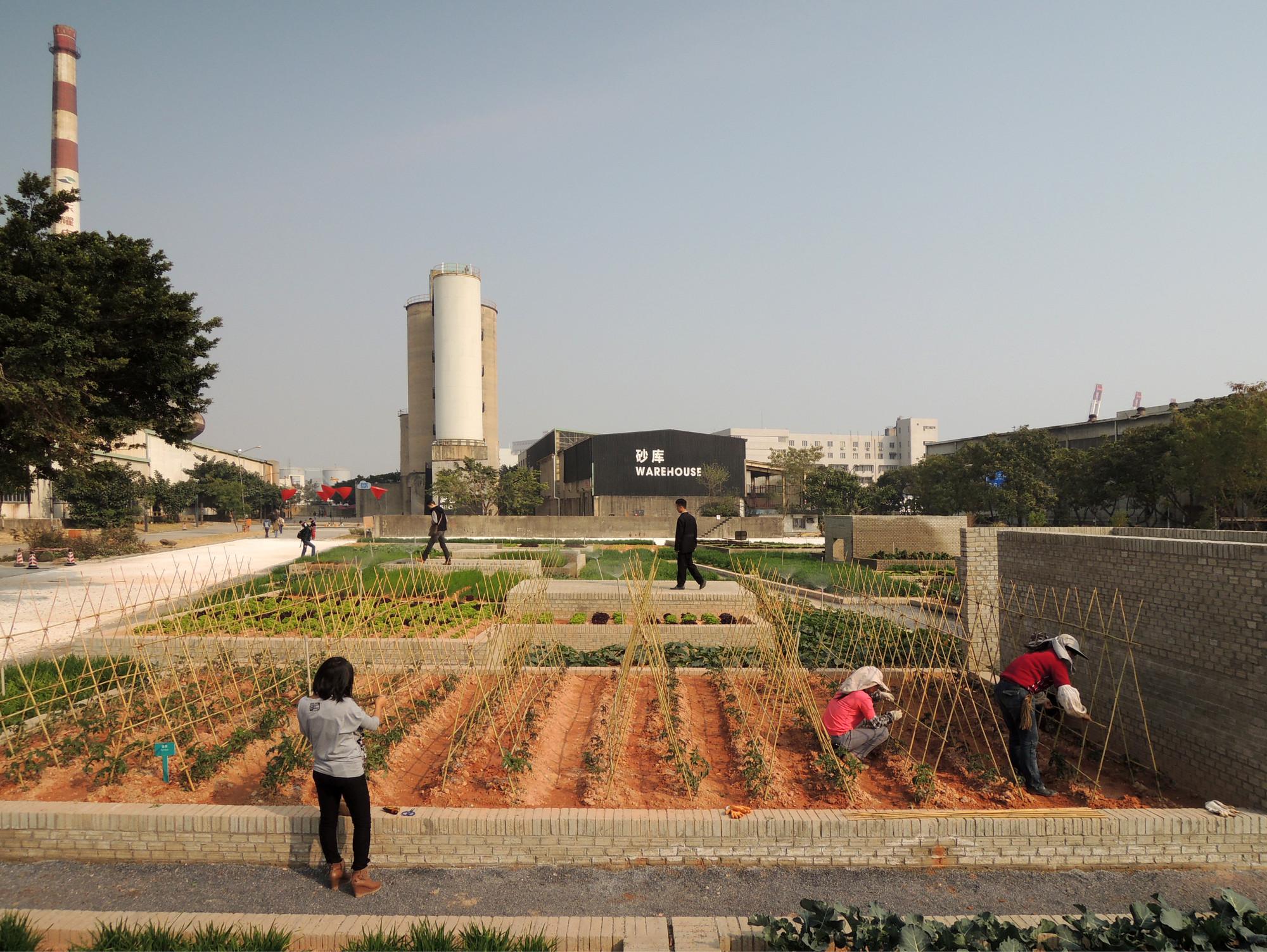 Value Farm / Thomas Chung, © Value Farm
