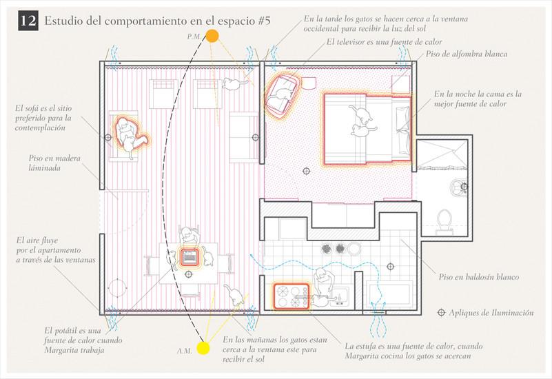 Projeto de Arquitetura para Gatos / Oficina Informal