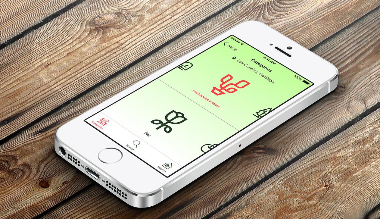 Plantsss: una app que te ayuda a diseñar tus espacios exteriores