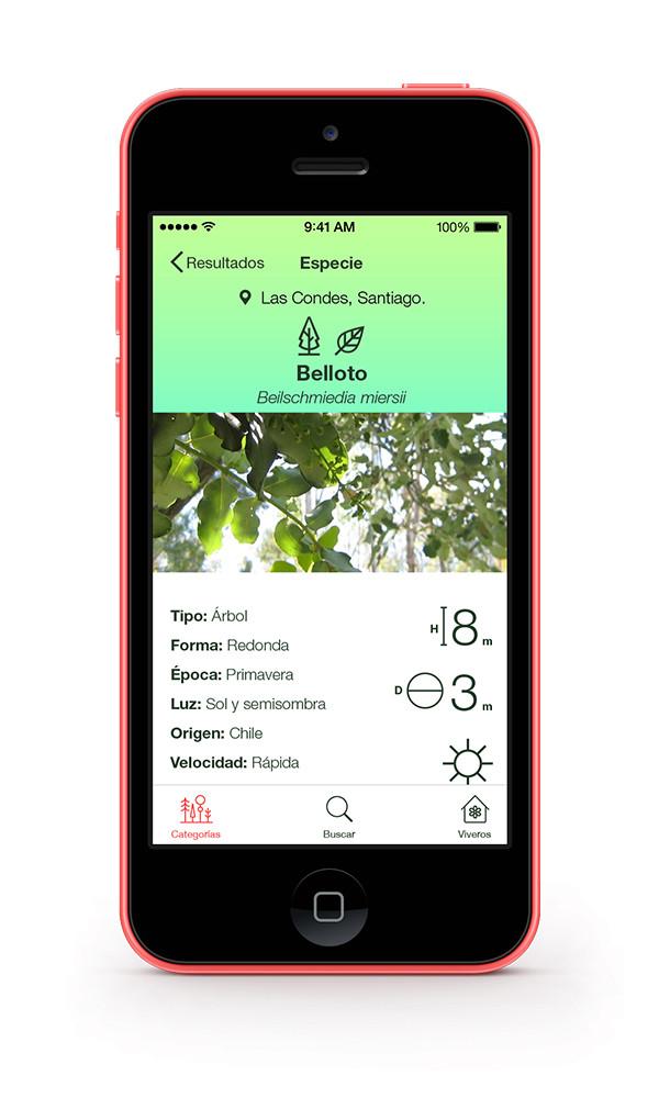 Plantsss: um catálogo completo de espécies vegetais em seu celular
