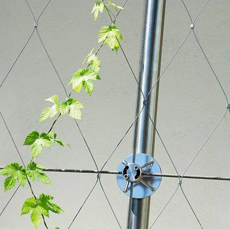 En Detalle: Jardines Verticales, Courtesy of Brimat