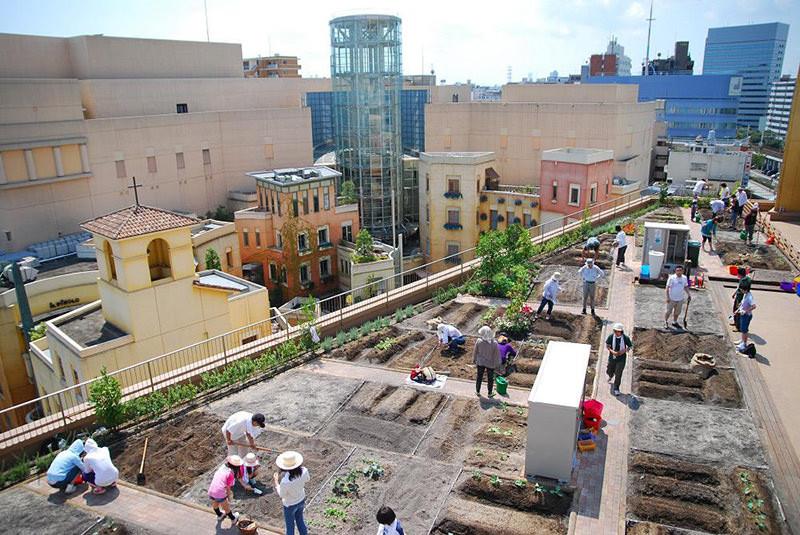 Japão inaugura hortas urbanas em estações de trem, Courtesy of popupcity.net