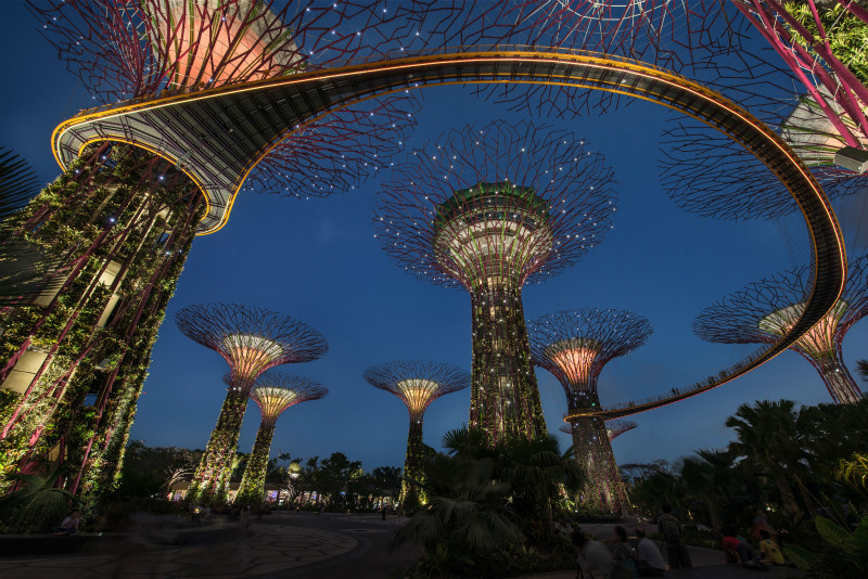 Proyecto de Iluminación: estrategias lumínicas en Garden by the bay por Lighting Planners Associates, © Lighting Planners Associates, Toshio Kaneko