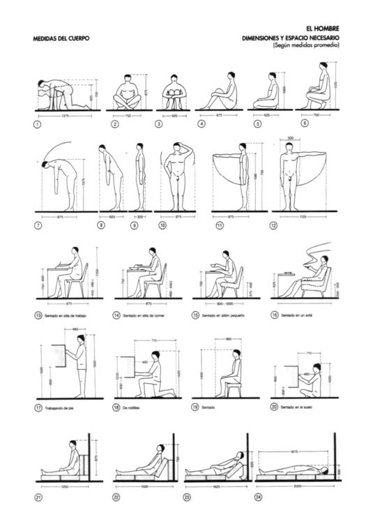 O ser humano como medida da arquitetura archdaily brasil for Medidas antropometricas del cuerpo humano