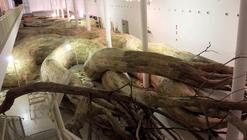 Arte y Arquitectura: Artista brasileño construye un Laberinto de Raíces de Madera