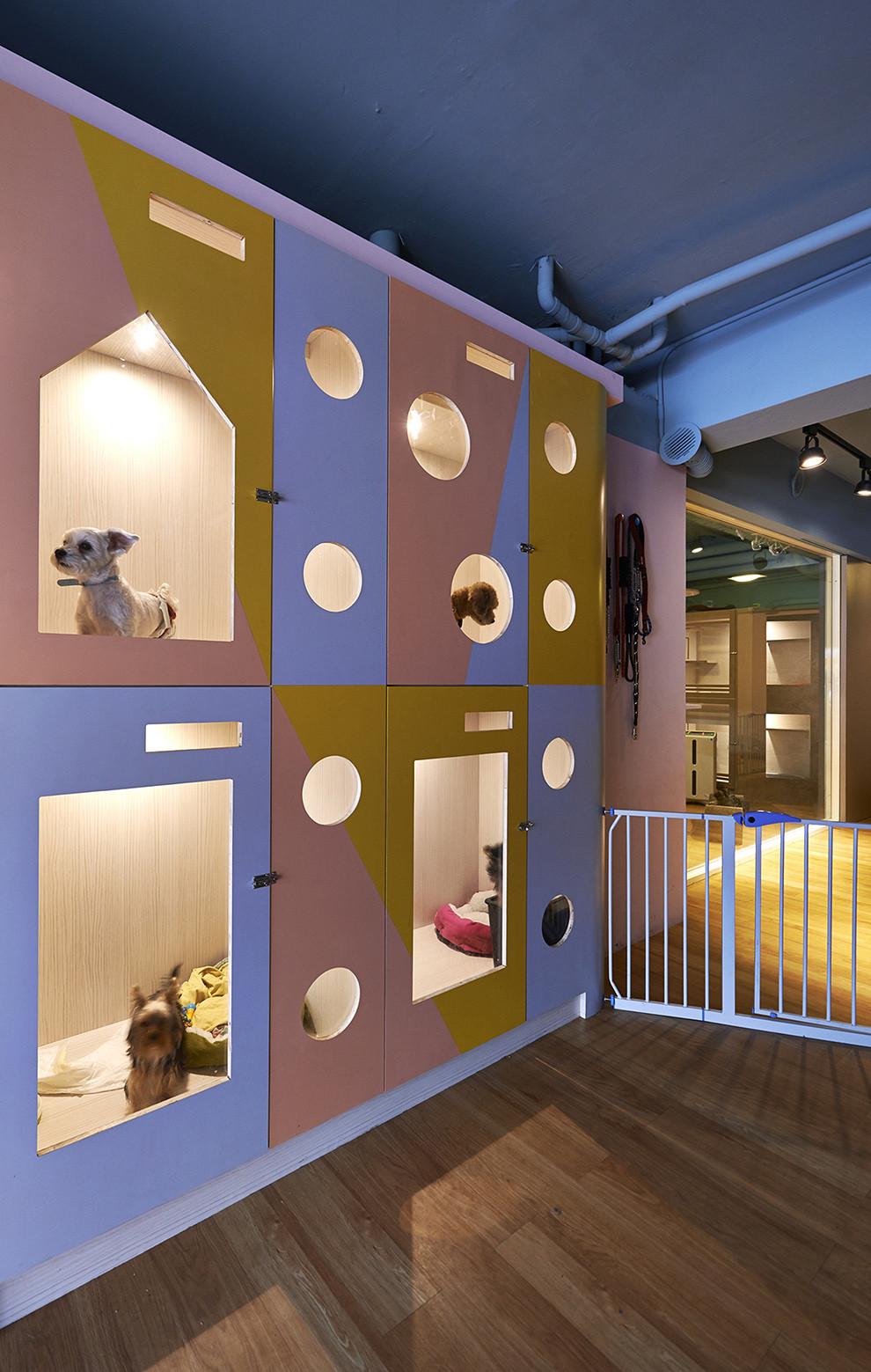 Galeria de hotel petaholic sms design 2 for 4 design hotel saccharum