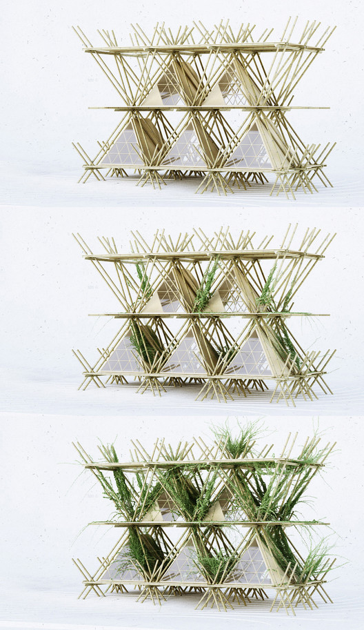 """This Temporary Treetop Hotel Lets You Sleep """"With the Birds"""""""