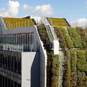 Materiales muros verdes descontaminantes ac sticos y - Emisores termicos carrefour ...