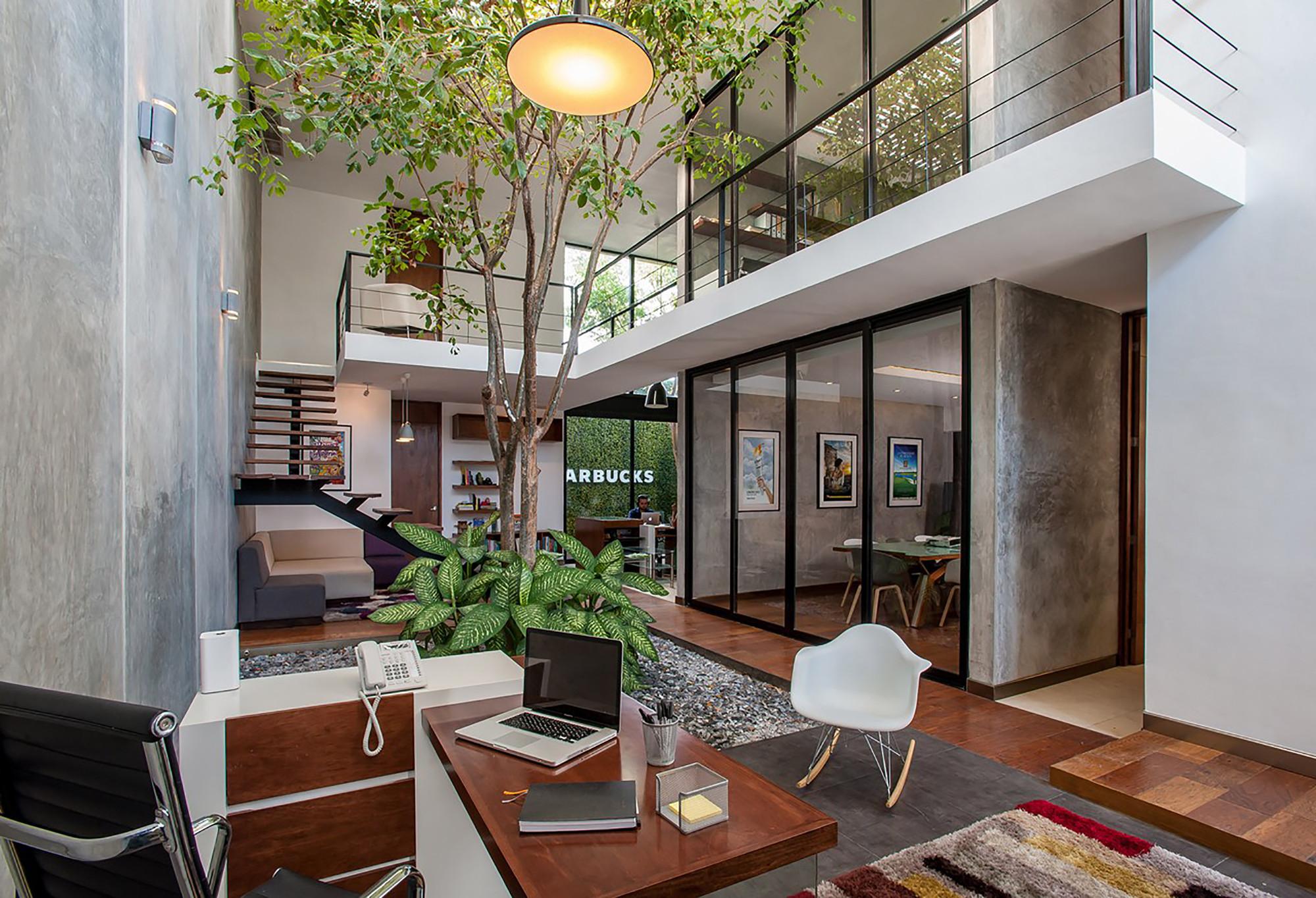 Oficinas matatena desnivel arquitectos archdaily m xico for Plantas para decoracion minimalista