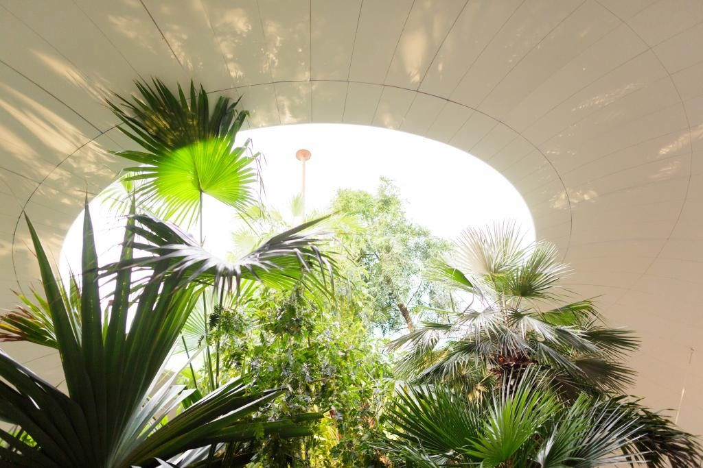 Inside SeARCH's Utopian Hobbit Hole at the Architecture Biennale Rotterdam