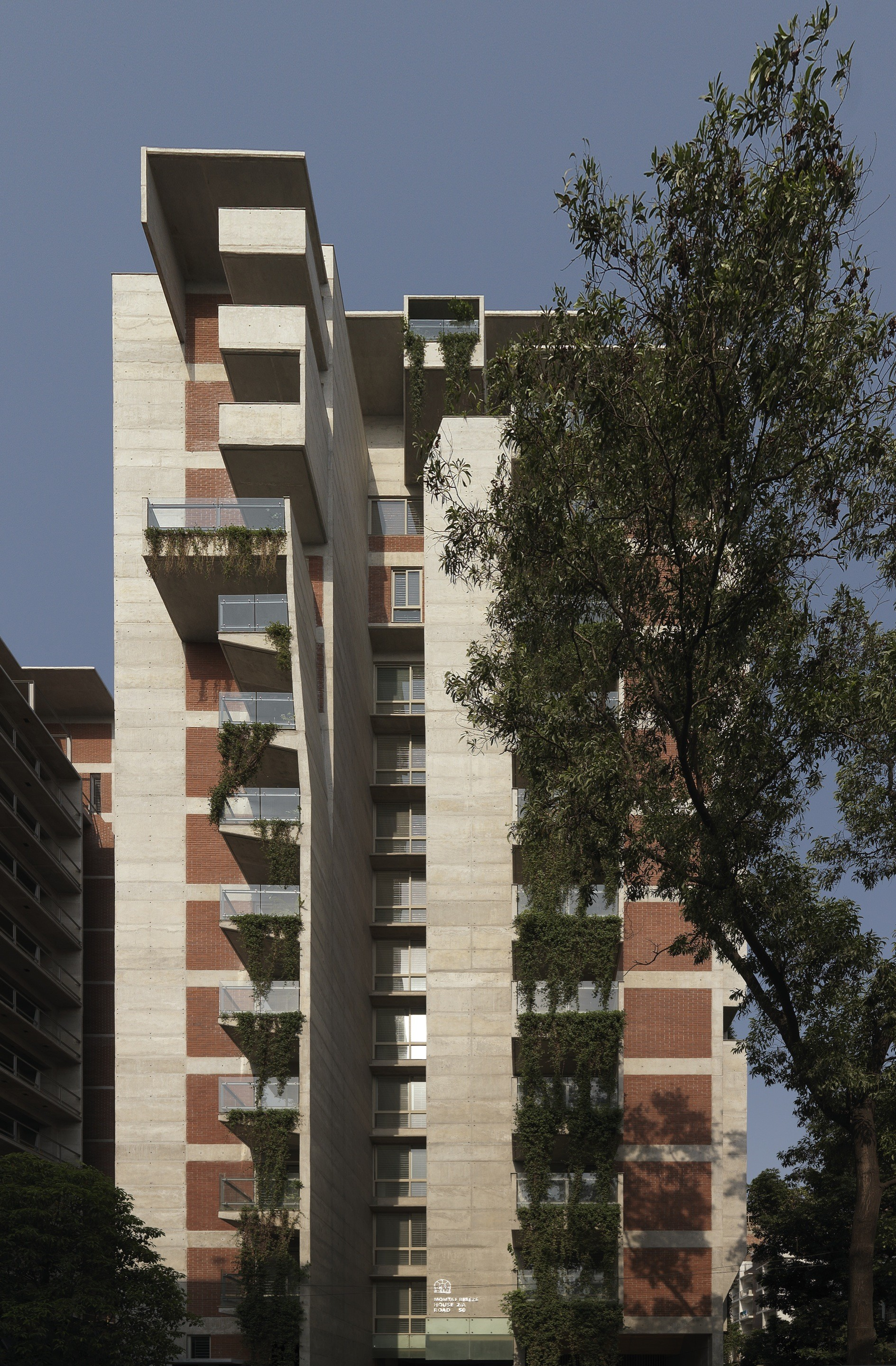 South 5053 Apartments Shatotto Archdaily