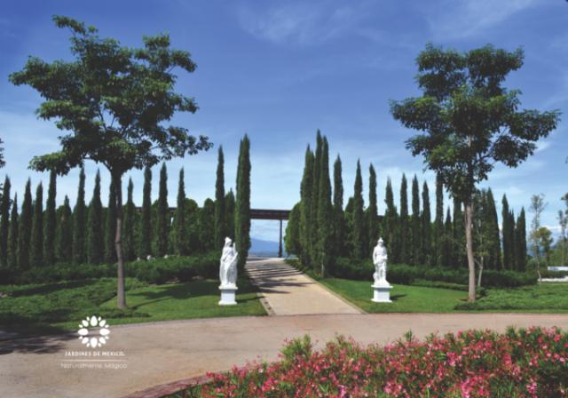 El Jardin Mas Grande Del Mundo Se Encuentra Ubicado En Mexico
