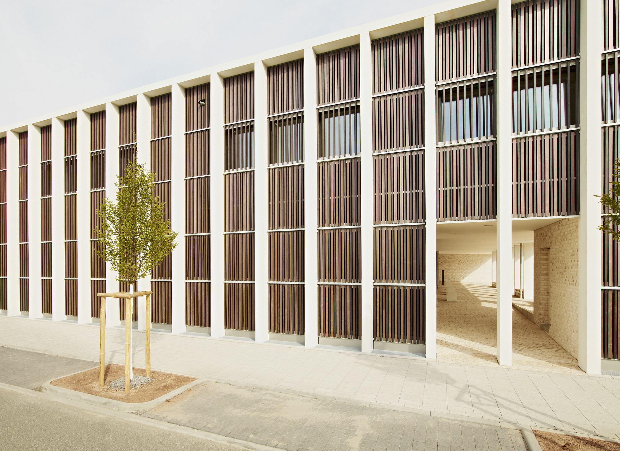 Grammar School Frankfurt-Riedberg  / Ackermann+Raff, © Thomas Herrmann