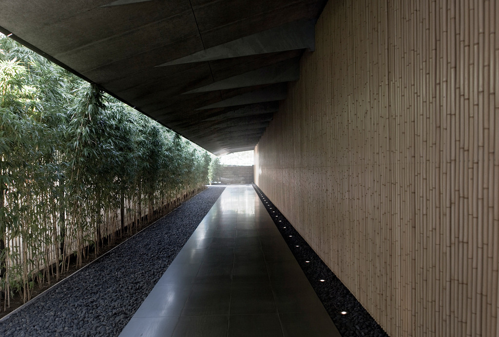 Gallery of Merging Bamboo & Concrete for the Emerging