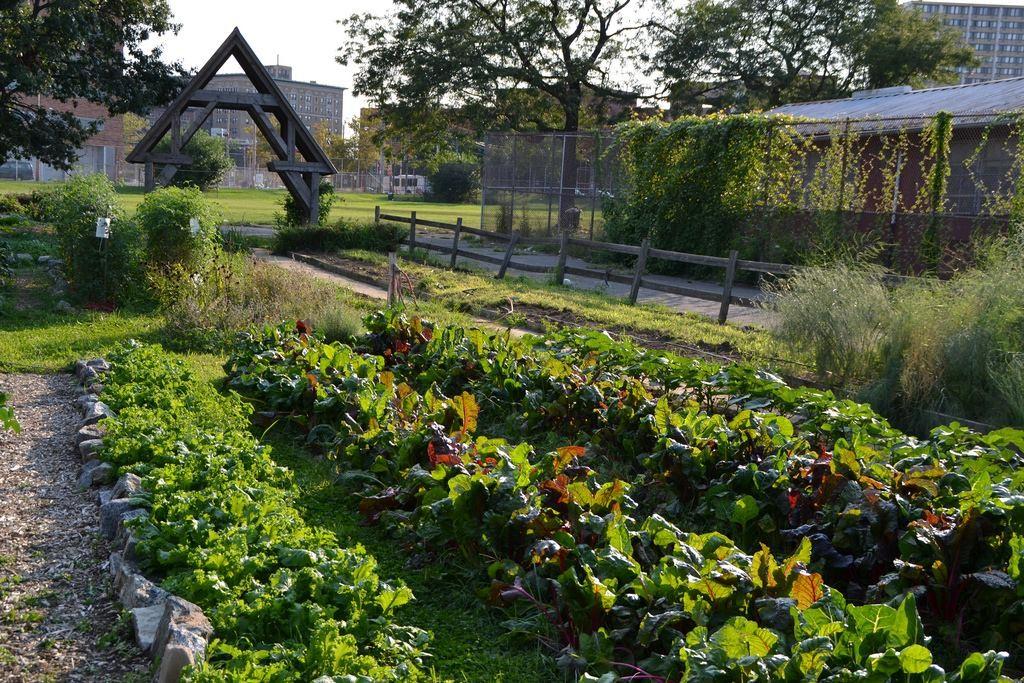 4 organizações cidadãs dos EUA que transformam lugares abandonados em espaços públicos, © Grounded in Philly