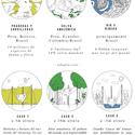 Características ambientais. Cortesia de Aida Salán