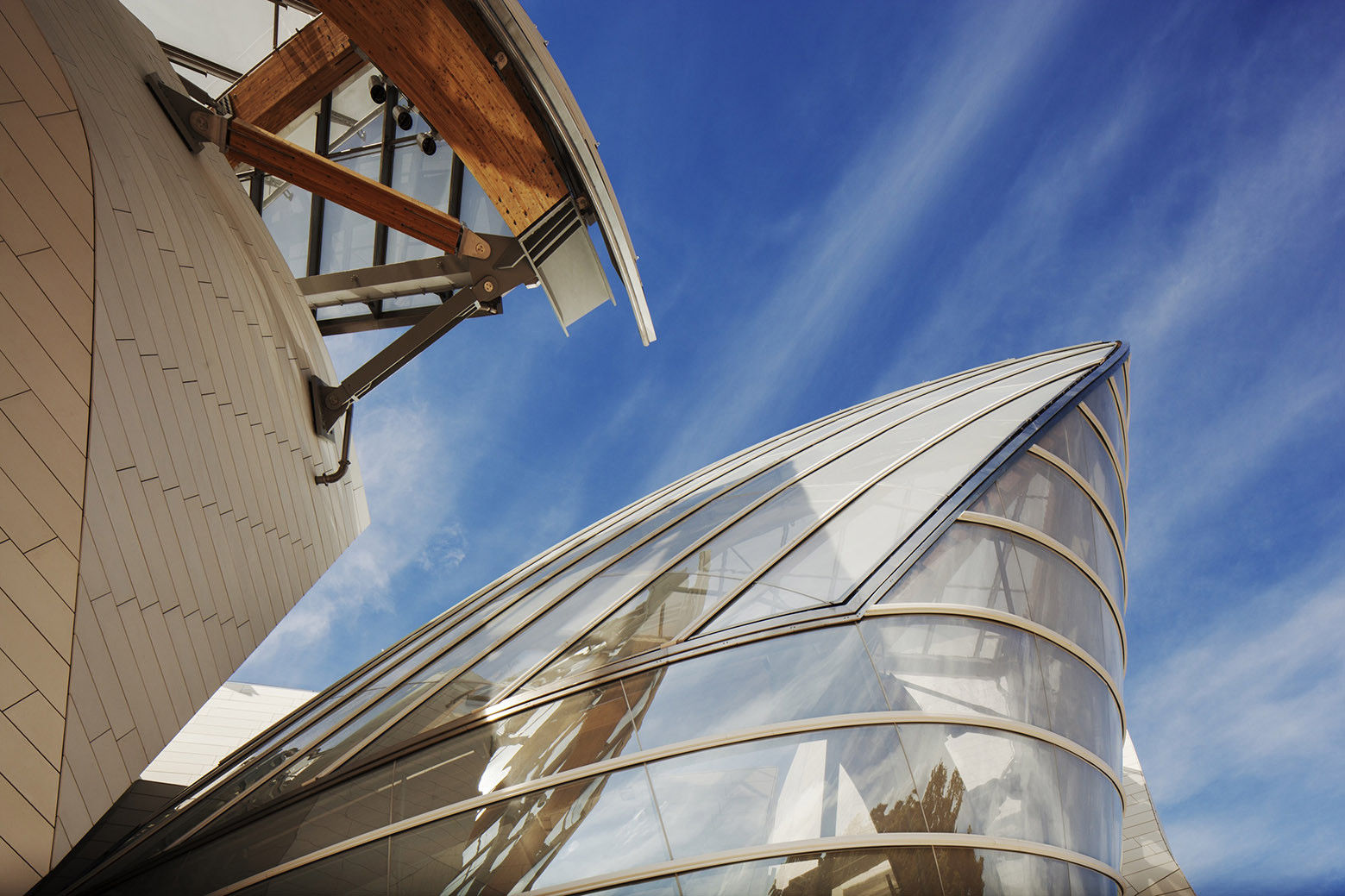 Gallery of Fondation Louis Vuitton / Gehry Partners