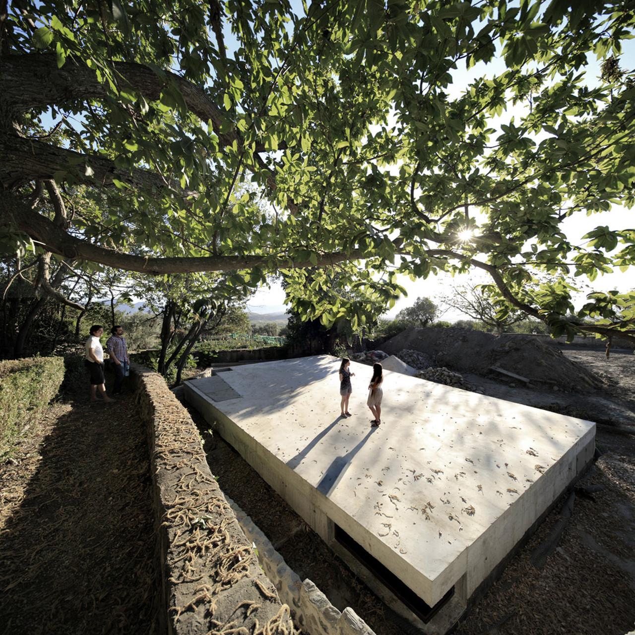 """""""Viagem ao interior de um horto"""": jardim coletivo, parque e espaço cênico"""