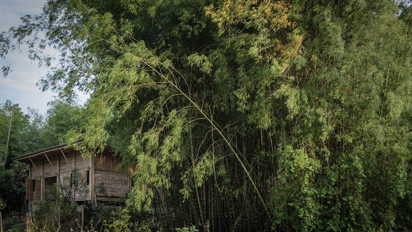 Galer a de casa convento enrique mora alvarado 7 for Casa con piscina quebrada alvarado
