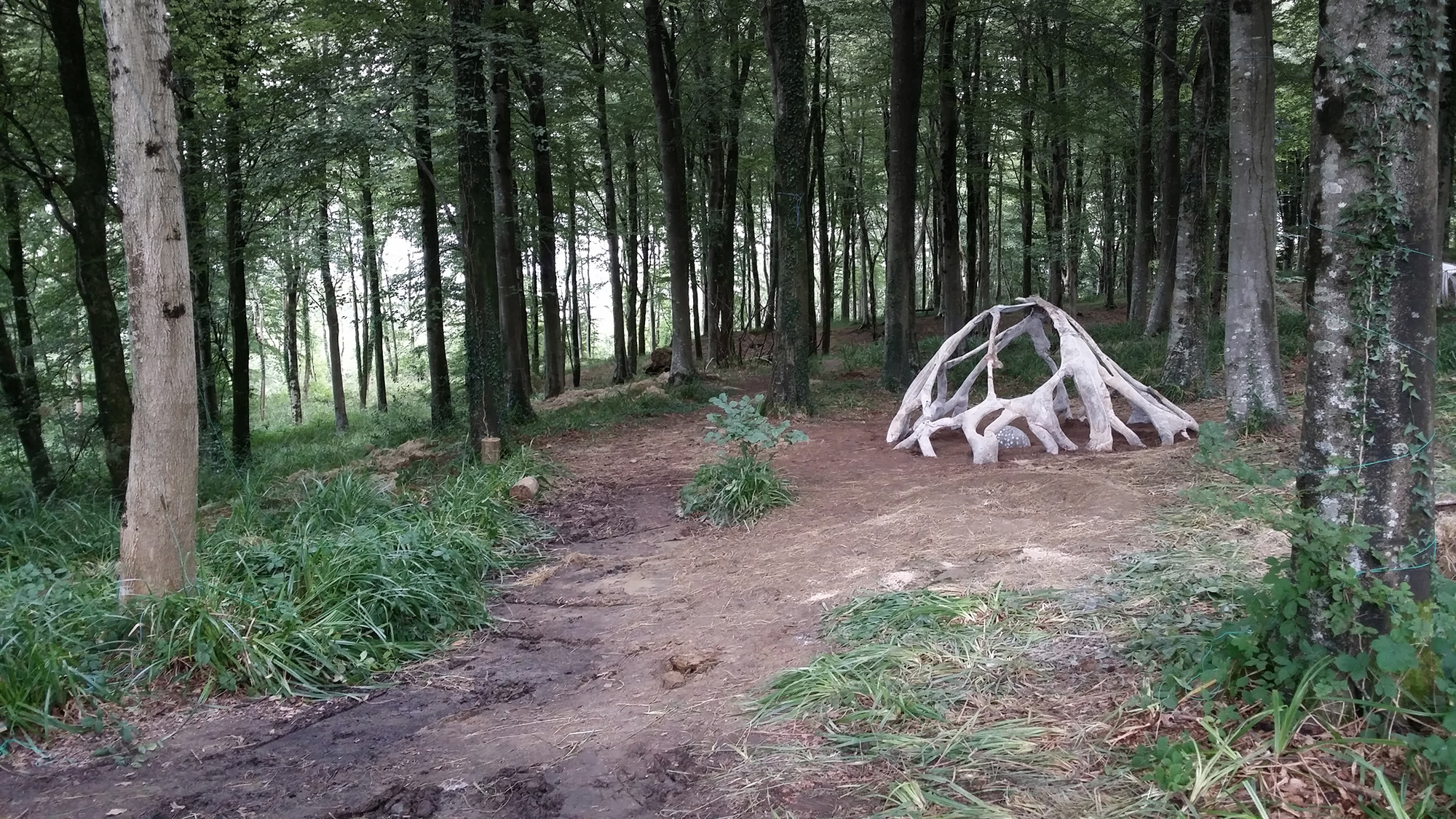 "AA DLAB 2014: The Natural and Digital Worlds Combine With Root-Like ""CALLIPOD"" Pavilion, © Alexandros Kallegias"