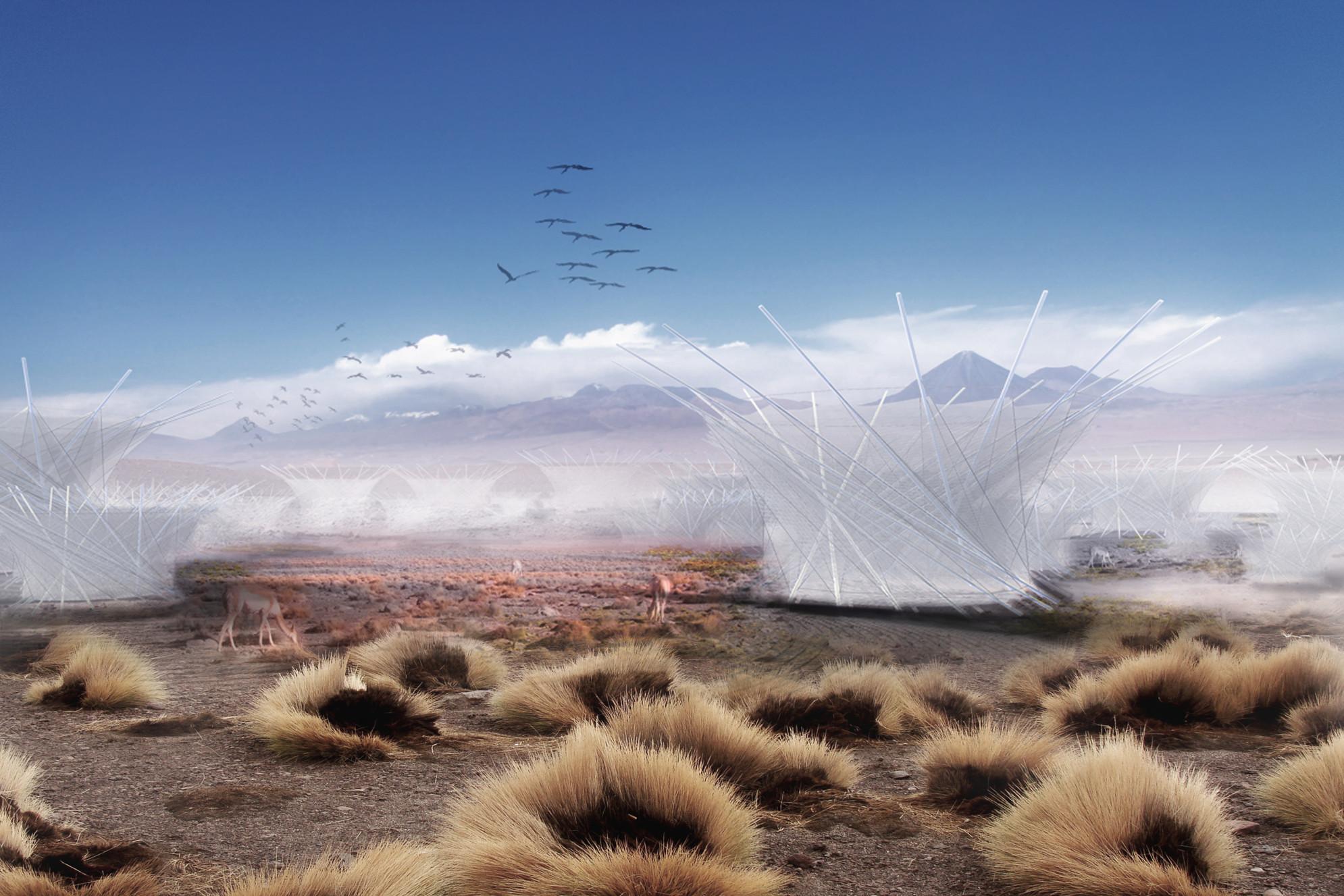 Granja de nubes en Atacama: buscando captar el agua del desierto, Cortesia de Z4Z4