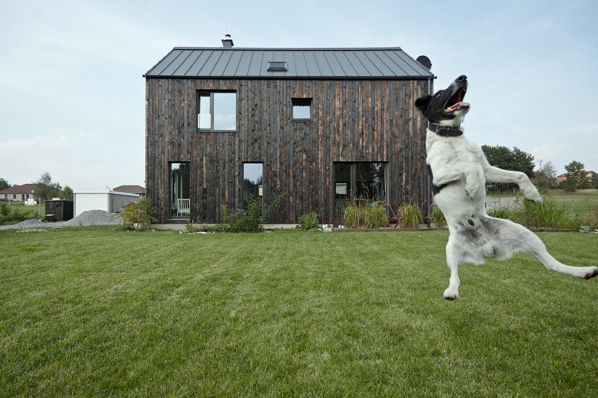 Casa Dox / Mjölk architekti, © BoysPlayNice