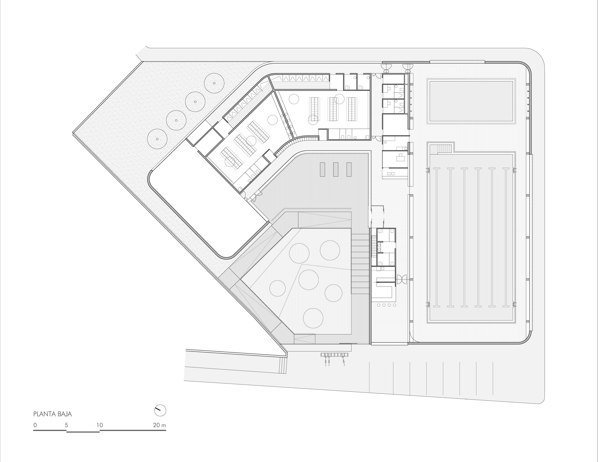 municipal indoor pool in constantina suárez corchete archdaily