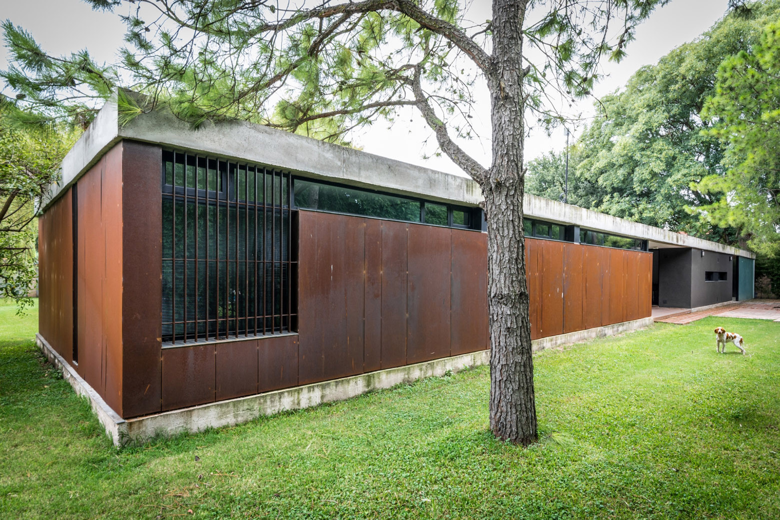 gallery of linear house   roberto benito 11