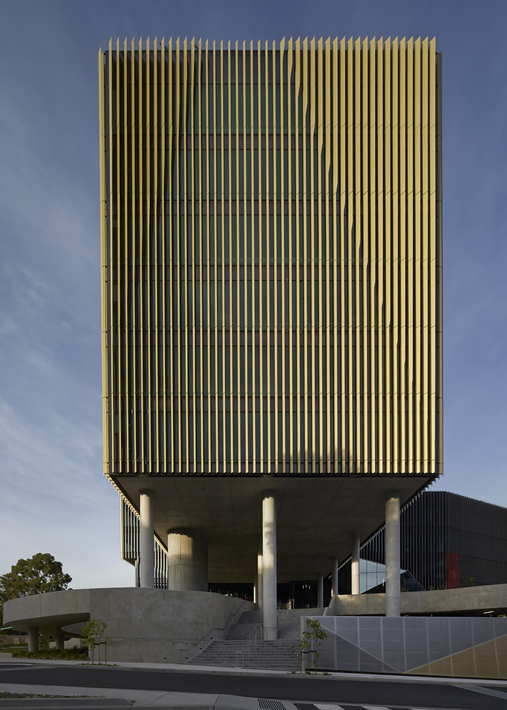 Burwood highway frontage building woods bagot archdaily for Architectural columns