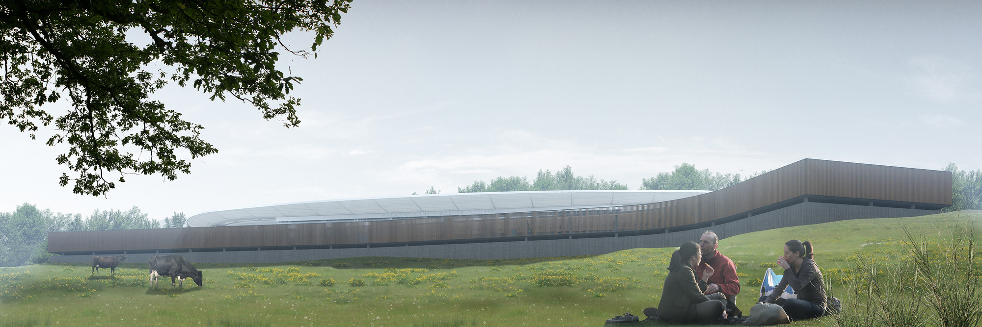 T+AA, segundo lugar en concurso de ideas para nuevo estadio de Osorno en Chile, Cortesia de T+AA