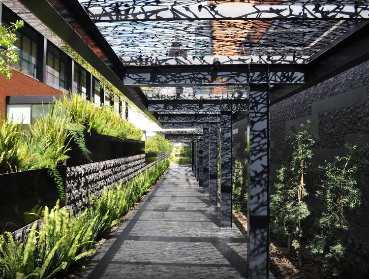 Arquitectura de Paisaje Campus Corporativo Coyoacán / DLC Arquitectos + Colonnier Arquitectos, Cortesía de DLC Arquitectos