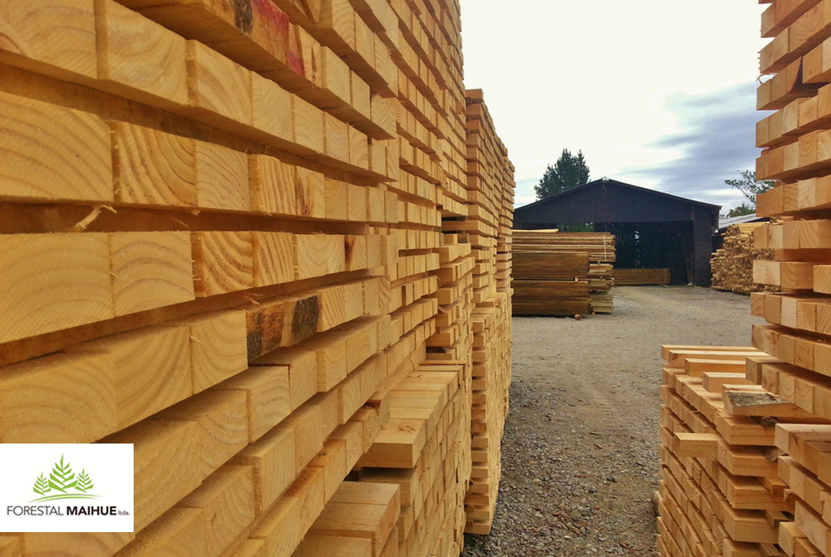 Forestal Maihue en Plataforma Arquitectura