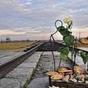Campo de concentración Auschwitz-Birkenau. Image vía Félix Carrera [Flickr CC]