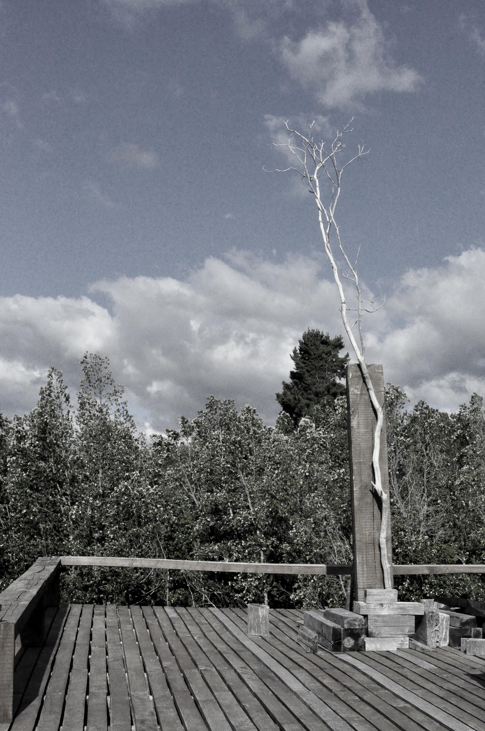 Galer a de paisaje y arquitectura kawelluco el centro de for La paisajista