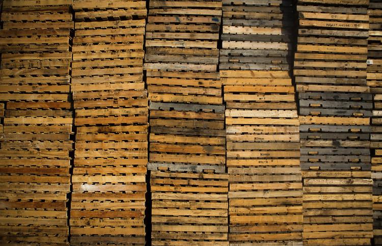 Pallets. Imagen cortesía de Emergency Floor