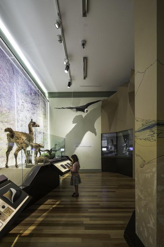 Museografia do Museu de História Natural de Valparaíso / SUMO arquitectura y diseño, © Aryeh Kornfeld