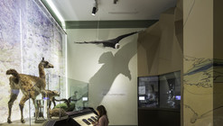 Museografía  Museo de Historia Natural Valparaíso  / SUMO arquitectura y diseño