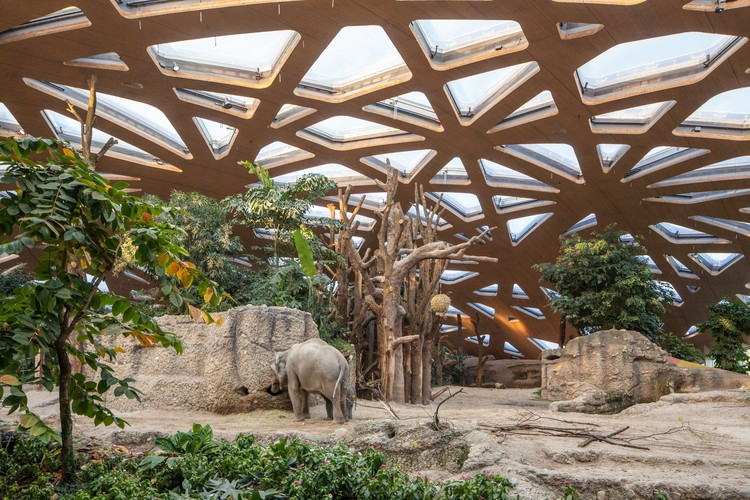 Elephant House Zoo Zürich / Markus Schietsch Architekten, © Andreas Buschmann