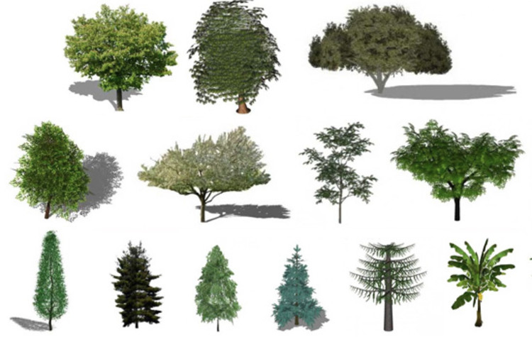 Refresh the greenery in your renders with this free for Arboles y plantas para jardin