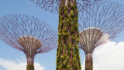 Gardens by the Bay / Grant Associates