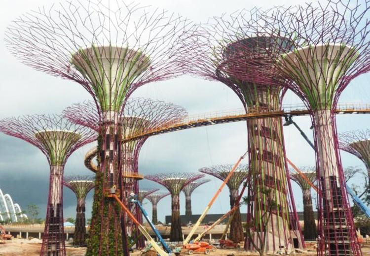 En Construcción: Gardens by the Bay + Supertrees / Wilkinson Eyre + ...