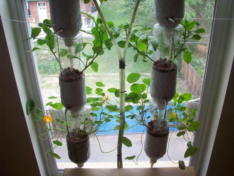 Windowfarms: Huertas inteligentes al interior de los edificios, © Windowfarms