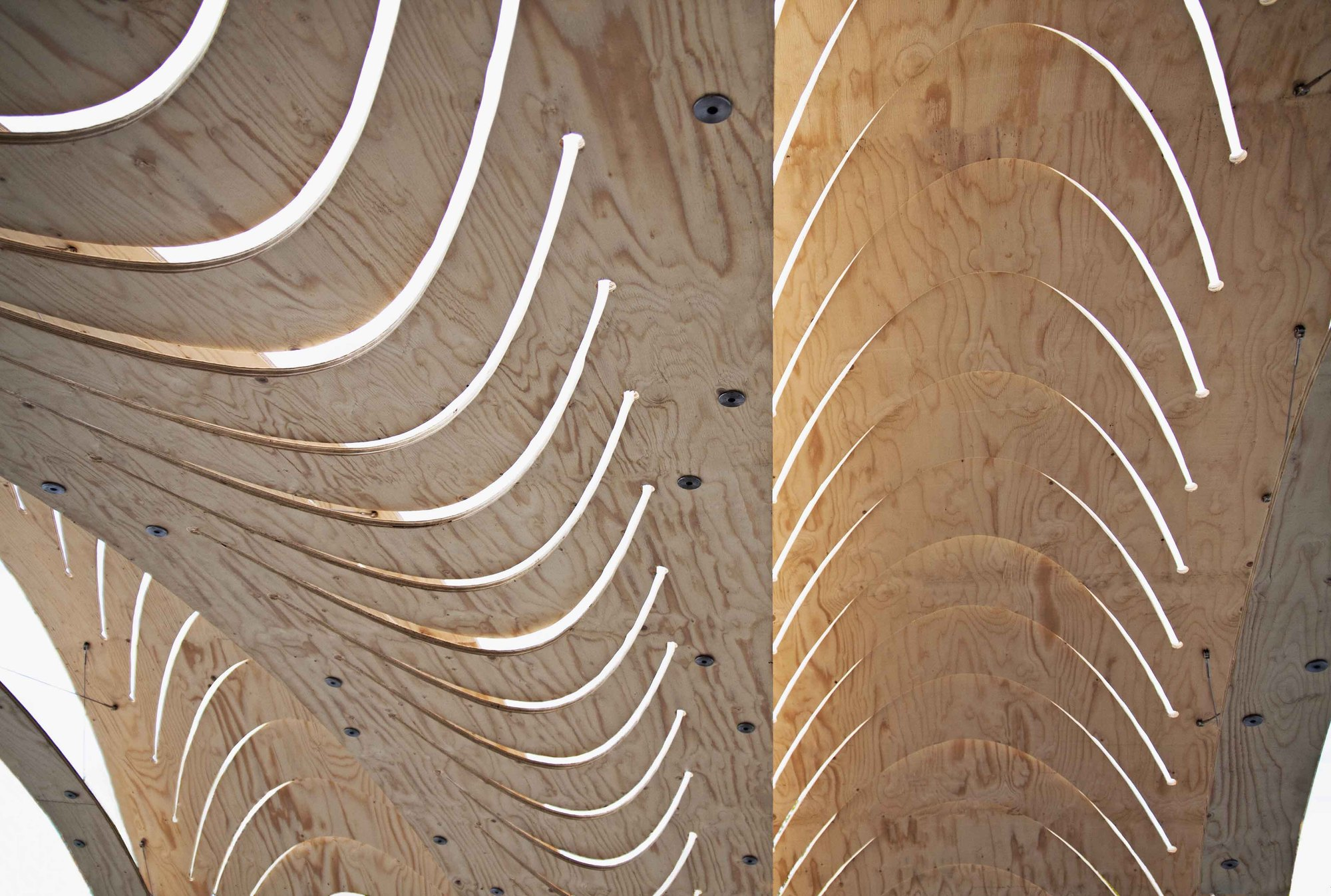 Gallery of pavilion emtech aa eth 2 Wood architecture definition
