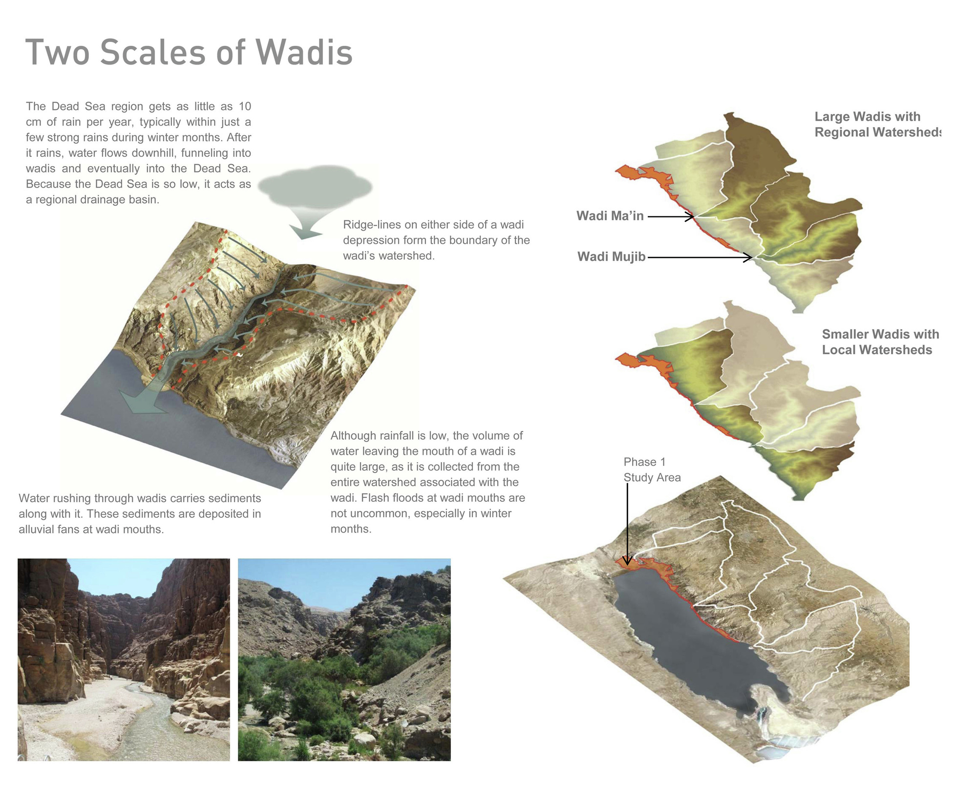 wad a watershed lab essay Arabic and islamic philosophy of language and logic this is a watershed moment: especially 'ilm al-wad.