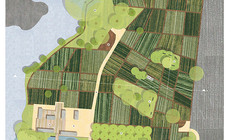 The Grow Dat Youth Farm & SEEDocs: Mini-Documentaries on the Power of Public-Interest Design