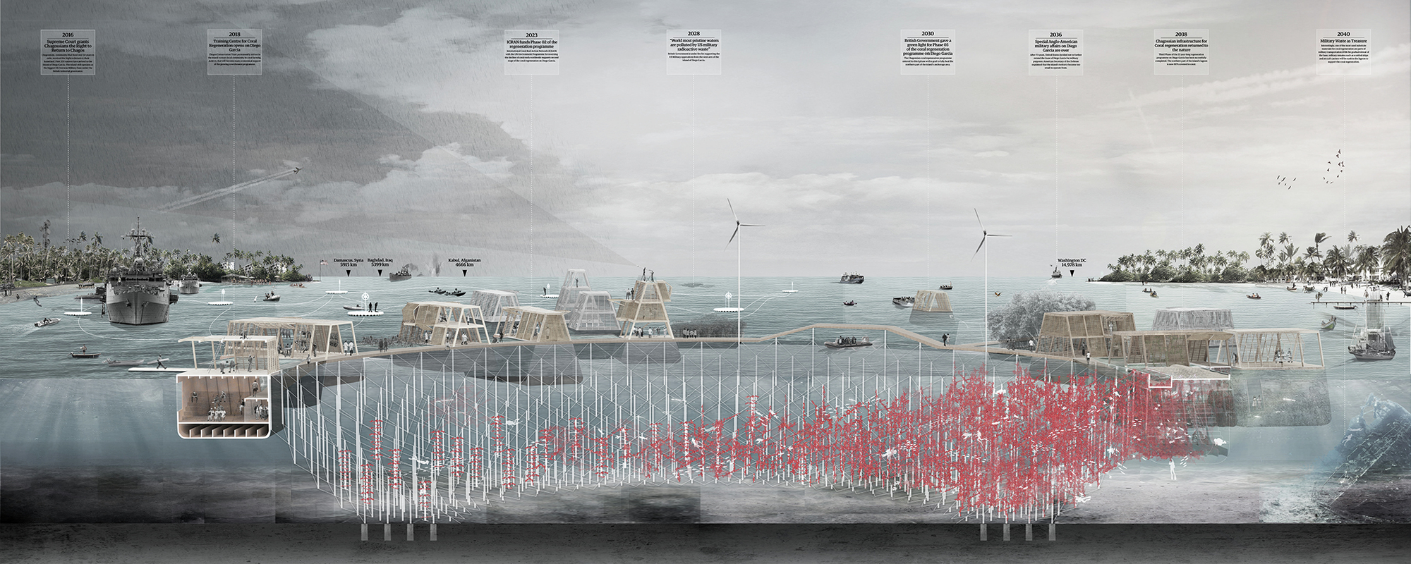 """""""Coral Frontiers"""" Proposes System of Coral-Remediating ..."""
