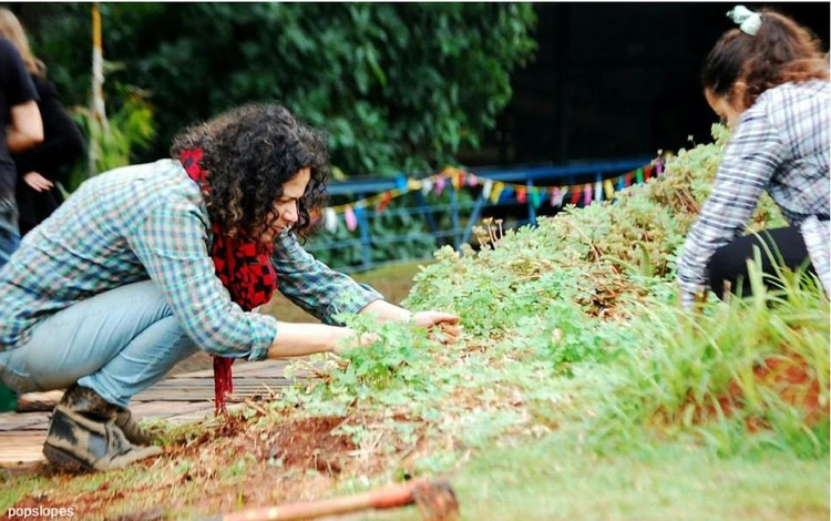Sesc SP promove curso sobre agroecologia urbana
