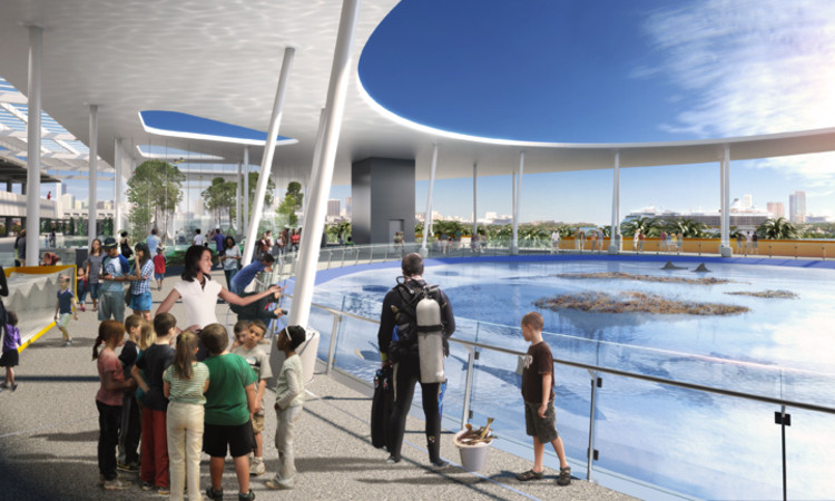 New Science Museum Miami >> Patricia And Phillip Frost Museum Of Science Grimshaw Architects