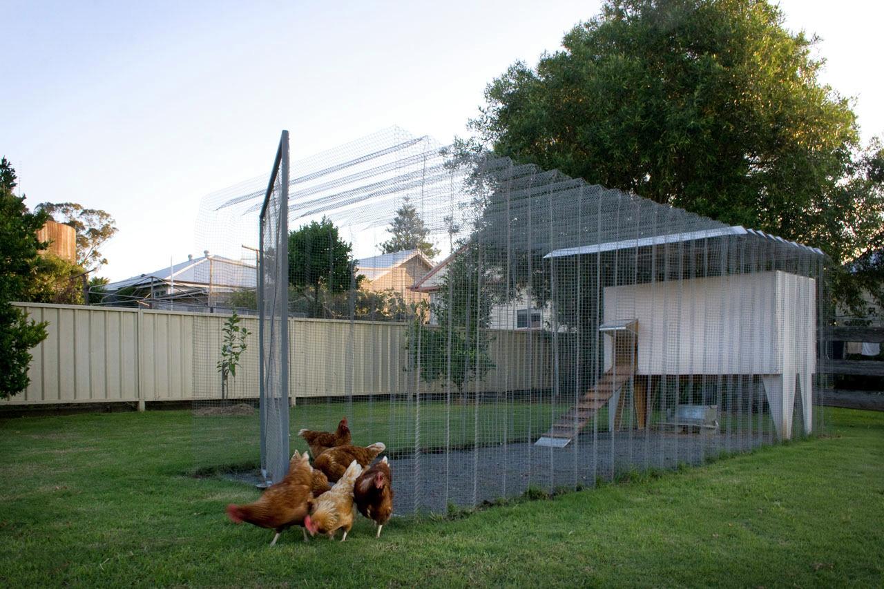 Cool Chicken Coop Ideas
