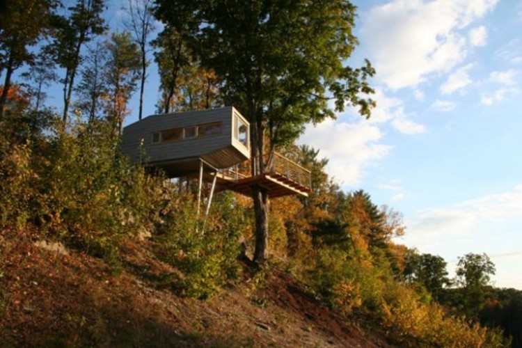 Gallery of Cliff Treehouse / Baumraum - 14